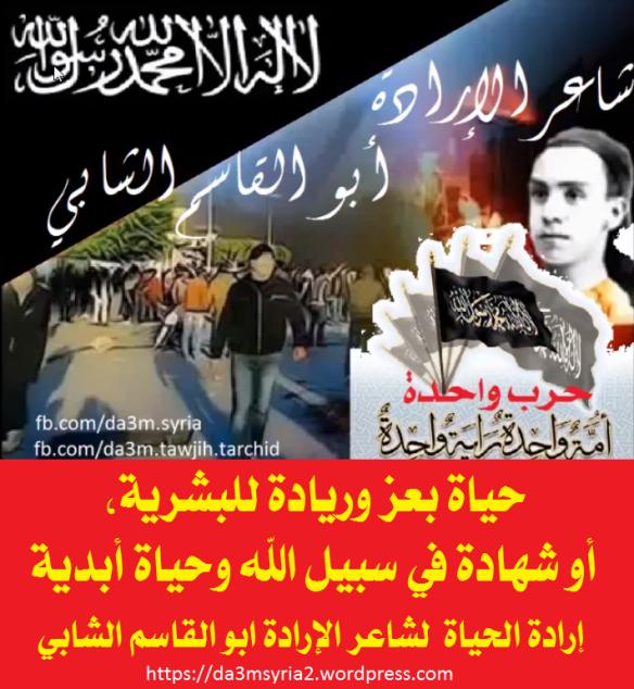 Abulqassem