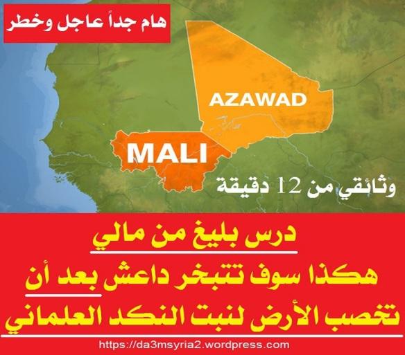 azawad-mali2 (1)