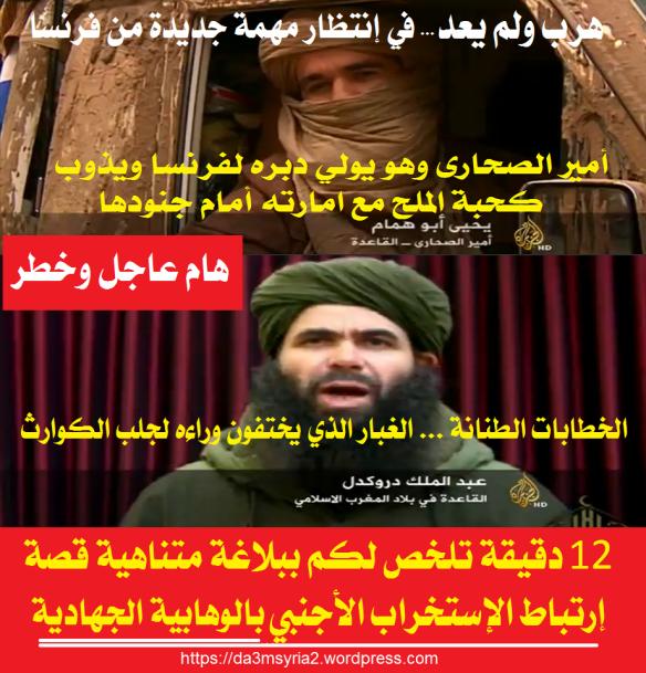qa3da14 (1)