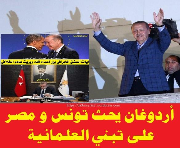 erdogan41