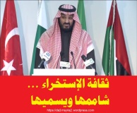 Mohamed salman al saud